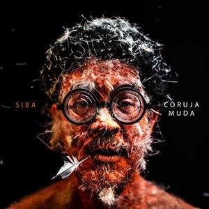 Siba Discos Brasileiros 2019 Crítica